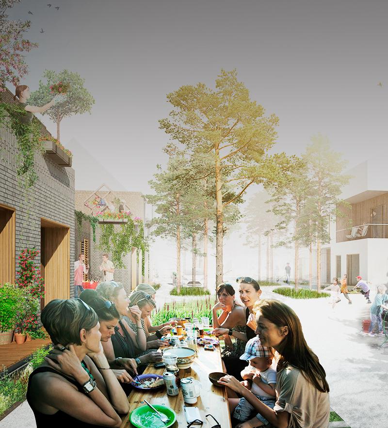 Fællesskaber på tværs i Hammersholt Enge. Koncept for fremtidens bæredygtige landsby.